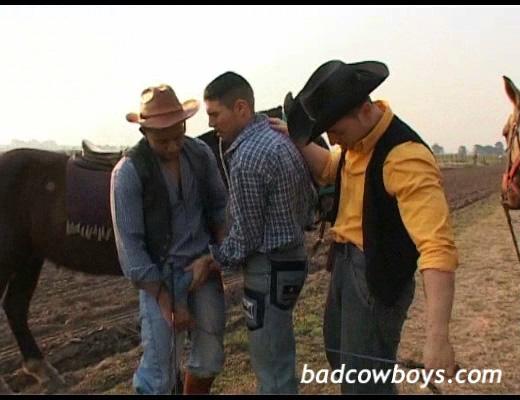 from Dimitri bad cowboys gay movies